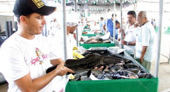 Consumidores lotam Parque da Pecuária na Feira do Peixe Vivo promovida pela Seagri