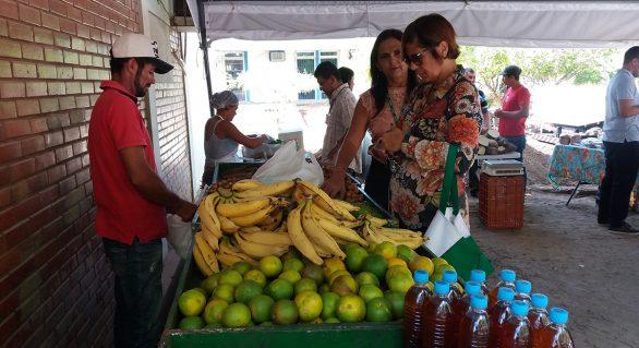 Sexta edição da feira orgânica incentiva o consumo de alimentos saudáveis