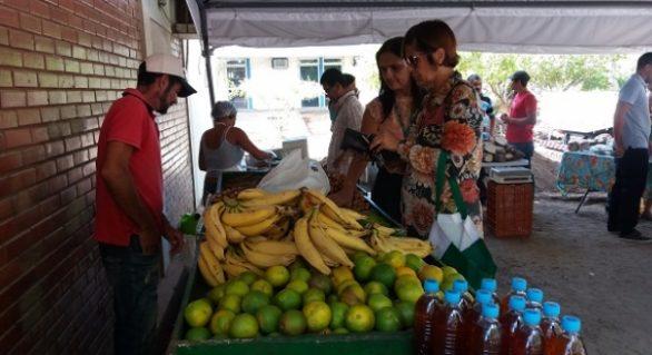 Feira orgânica incentiva o consumo de alimentos saudáveis