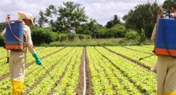 Estudantes são alertados sobre o uso correto de produtos agrotóxicos