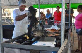 Secretaria de Agricultura realiza Feira do Peixe Vivo na Semana Santa em Maceió