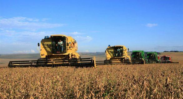 Plano Safra tem pontos positivos; nova colheita recorde é possível, diz Abag