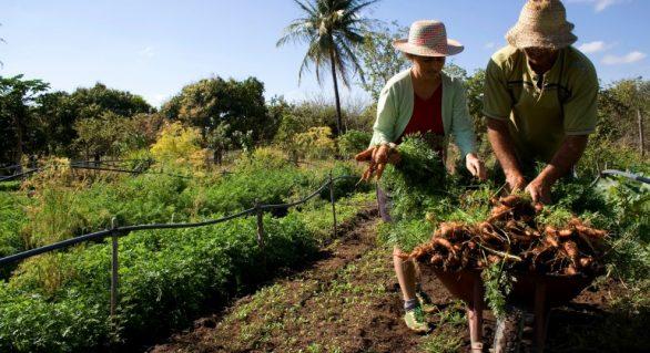 Governo do estado atrasa programa que deveria atender trabalhadores rurais