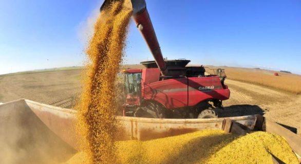 Conab diz que safra de grãos pode ser recorde com 234,3 milhões de toneladas