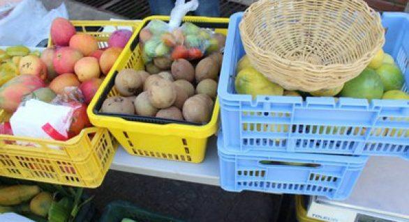 Semana do Meio Ambiente terá feira orgânica no próximo domingo (18)
