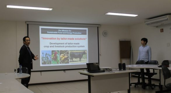 Japoneses trazem tecnologia na produção de sorgo para Alagoas