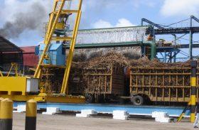 Importação de etanol de milho ameaça produção nacional