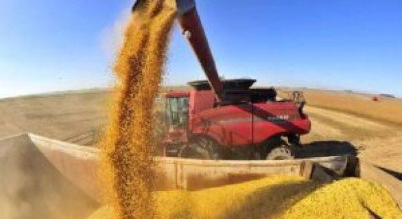 Balança comercial do agronegócio tem melhor resultado para junho desde 2014