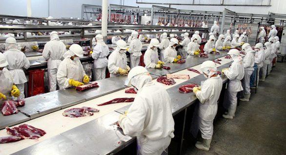 Maggi viajará aos EUA para discutir retomada de exportações de carne