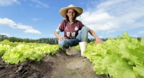 Governo concede 74 títulos de propriedade a pequenos produtores rurais