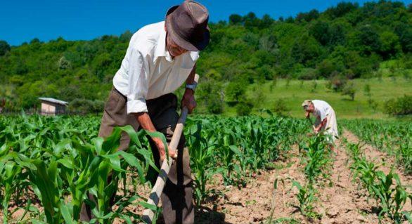 Congresso da Abag discutirá a necessidade de adaptações das leis trabalhistas às condições da atividade agrícola