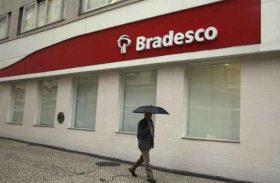 Bradesco paga R$ 1,1 mi para a CVM por cobrar taxa de 6% em fundo