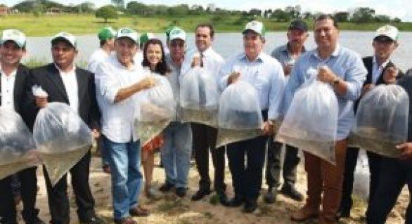 Governo distribui 40 mil alevinos a pequenos produtores de Carneiros
