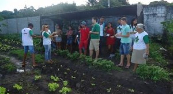 Jovens de Pindorama concluem módulo de curso em hortaliças