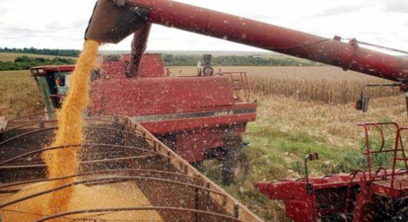 Em dez anos, Brasil deve ultrapassar os EUA na produção de soja