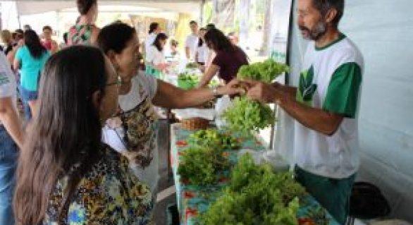 Domingo é dia de Feira Orgânica na orla de Ponta Verde