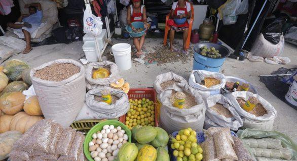 Feira da Reforma Agrária deve comercializar 300 toneladas de alimentos