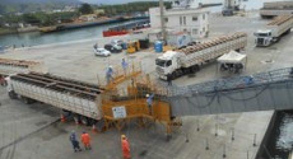 Mapa incentiva debate sobre boas práticas de transporte marítimo de bovinos