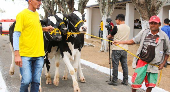 Expo Bacia Leiteira deve movimentar R$ 20 milhões em negócios