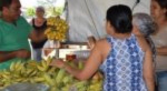 Feira agrária reúne cultura, lazer e produção agrícola de qualidade