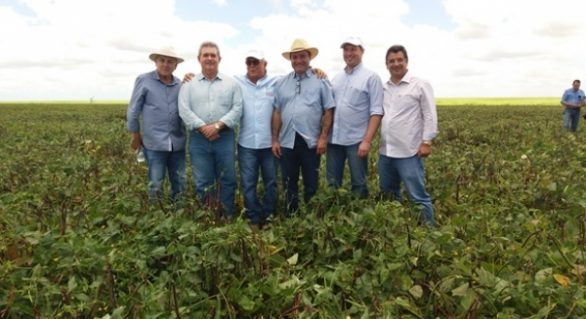 Alagoas ganha primeira área de produção de sementes de feijão, milho, sorgo e feijão
