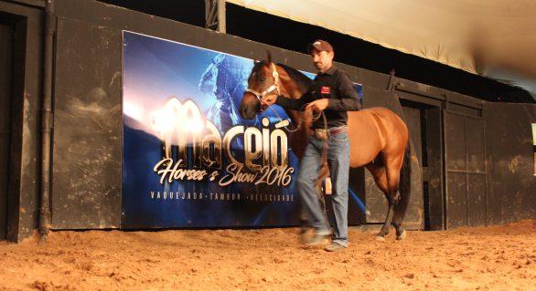 Mercado do QM aguarda seleção do Leilão Maceió Horse's Show