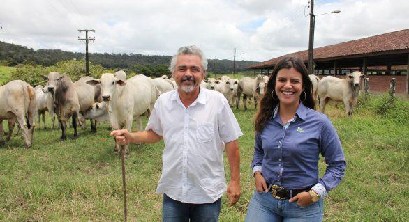 Leilão Produção Varrela oferece plantel com melhoramento morfológico