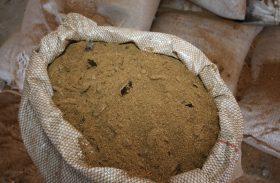 Cooperativa Coopaiba evita desperdícios com produção de ração animal