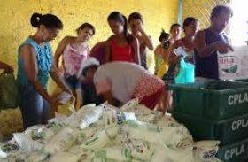 Programa do leite pode sofre novo 'revés' apesar da liberação de recursos do MDS