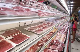 Indústria de carne do Brasil vê impacto limitado de suspensão russa