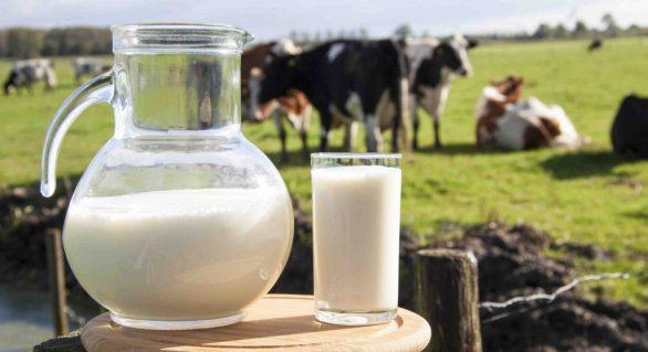 RF sinaliza que não vai deixar o programa do leite parar em AL