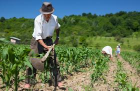 Produtor rural enfrenta alta nos insumos e queda no retorno por produção no mês de outubro