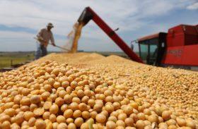 Plantio de soja no Brasil chega a 73% da área e elimina atraso