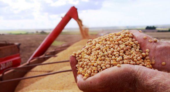 Exportações do agronegócio cresceram 40% em outubro sobre mesmo mês de 2016