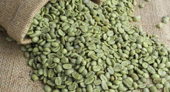 Exportação de café verde do Brasil recua 10% em novembro