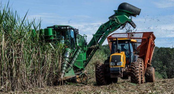 Safra 17/18 chega a 6,8 mi de toneladas de cana processadas
