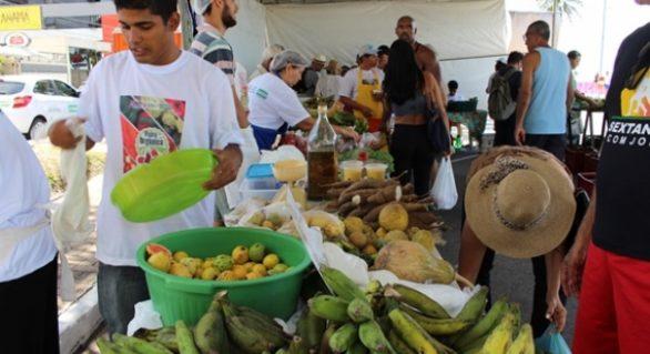 Última feira orgânica de 2017 acontece domingo (10) na Ponta Verde