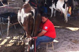 Torneio Leiteiro da CPLA certifica vocação leiteira no Sertão de AL