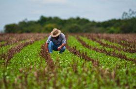 Agronegócio no Brasil contribuíram com 23,5% do PIB em 2017
