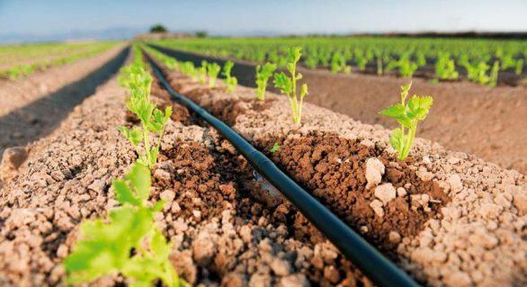 Mapa distribuiu 3,9 mil kits de irrigação em Alagoas, Maranhão, Pernambuco e Mato Grosso
