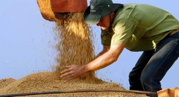 Alta do PIB da agropecuária deve reduzir pela metade em 2018