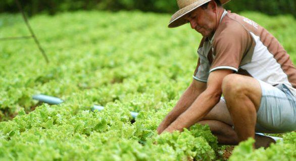 Atenção produtor: faltam apenas dez dias para apresentar o Cadastro Ambiental Rural