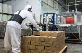 Número de exportações em Alagoas cresce 58,01%