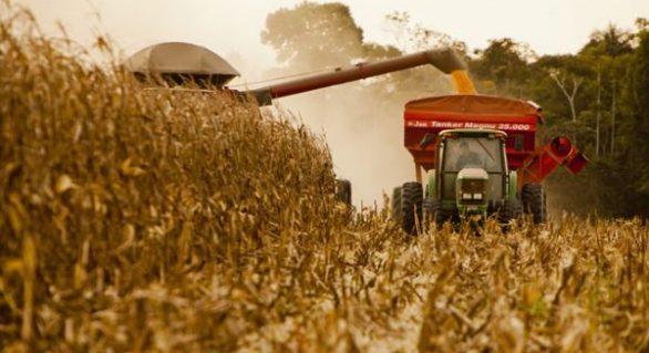 Conab estima queda de 4,1% no volume de grãos da safra 2017/2018