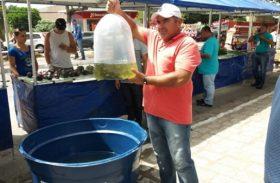 Alevinos geram renda para agricultores sertanejos de Alagoas