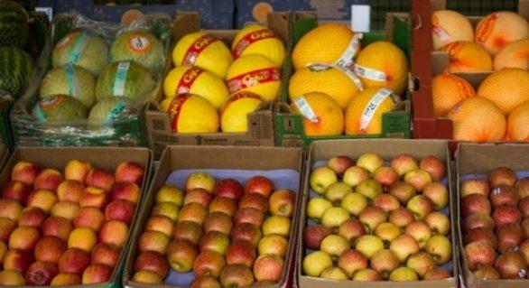 Mapa vai lançar plano para aumentar exportações de frutas