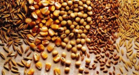 Safra de grãos poderá atingir 227,9 milhões de toneladas em 2017/2018