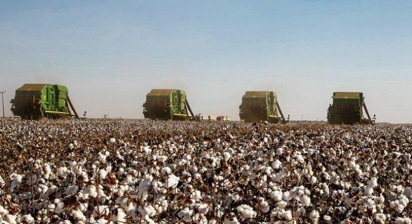 Consórcio de máquinas agrícolas atrai produtores