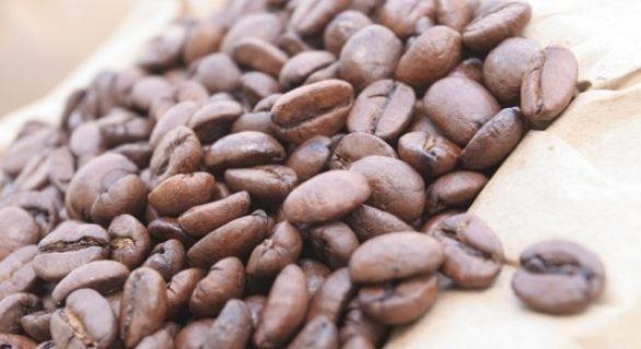 Tecnologia aumenta a produtividade do café no Brasil