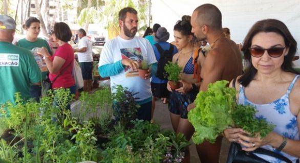Feira Orgânica da Semarh valoriza trabalho do pequeno agricultor